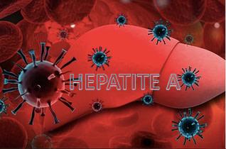 Doenças virais: Hepatite A