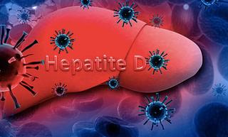 DOENÇAS VIRAIS: HEPATITE D